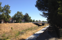 View along Arroyo Mocho