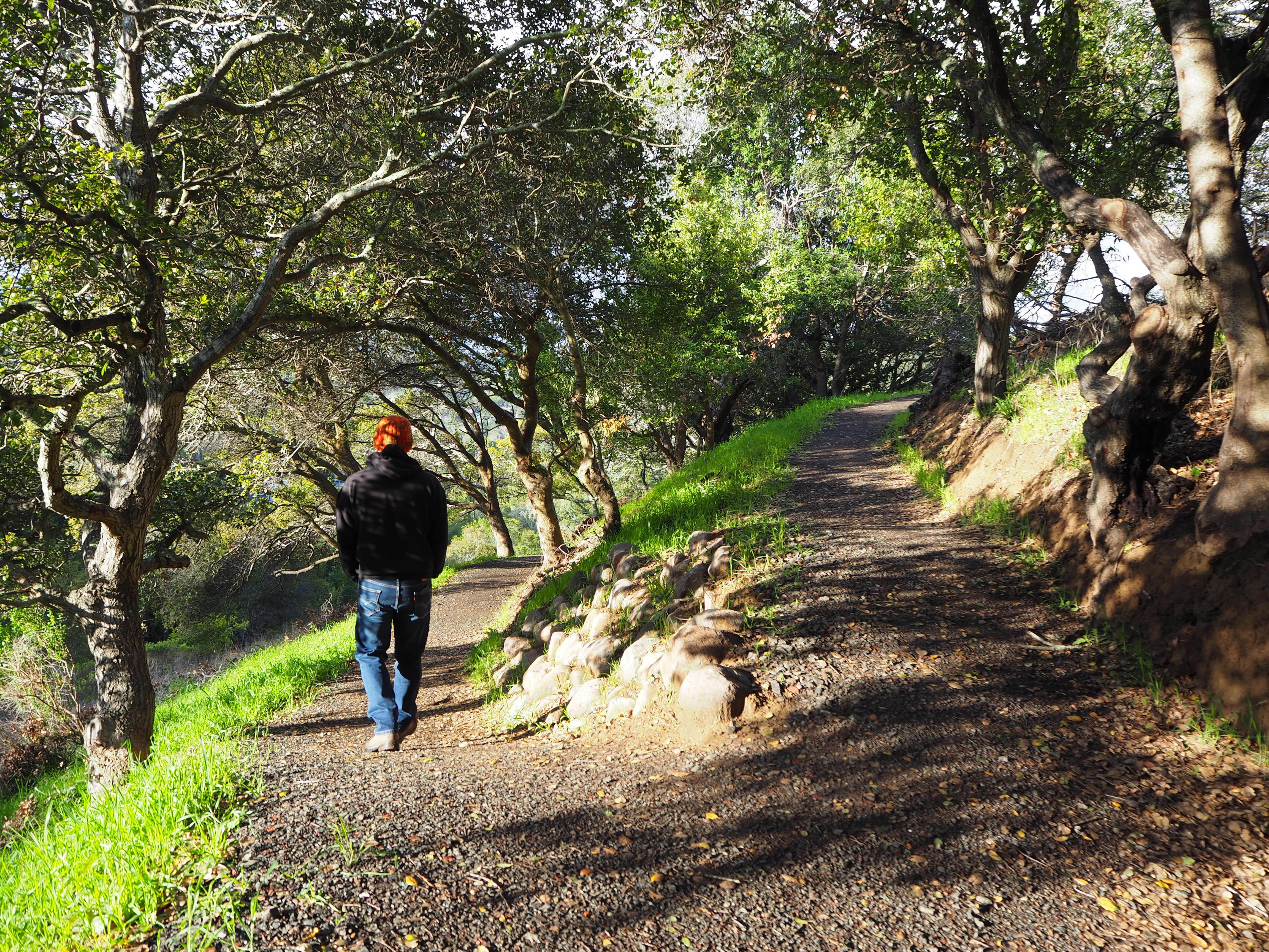 Bob Middagh Trail