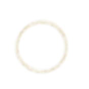 Gold Outer Circles.PNG