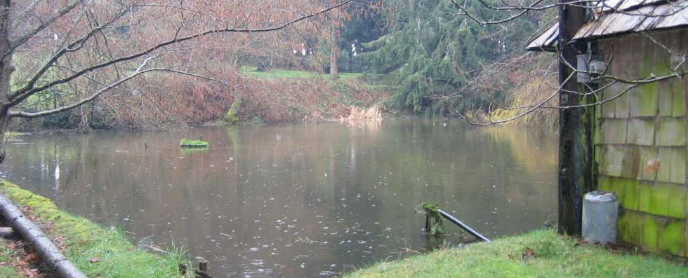 The lower pond in winter.