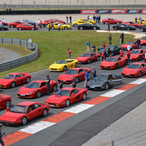 500 Ferrari contre le cancer