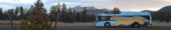 NAIPTA Bus