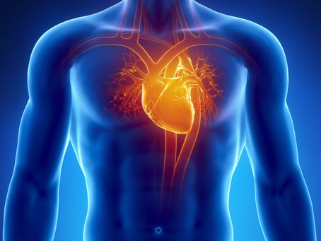 Cardiovascular Disease:  The top non-communicable disease in the Bahamas.