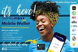 4 x 6 Money Maxx Flyer (5).png