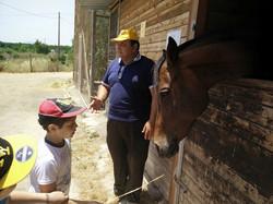 Children and horses