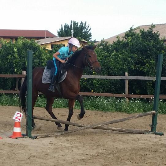 Lezioni di equitazione Briscola