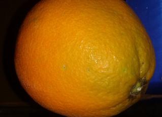 Arance ... cu l'avi si chianci ? Spiego perchè le nostre arance sono le migliori