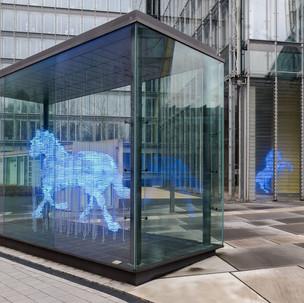 Zwei Pferde für Münster