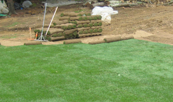 residential-sod-installation-complete