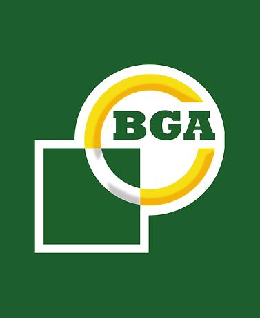 BGA.png