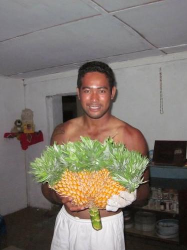 Three Headed Pineapple, Rotuma, Fiji