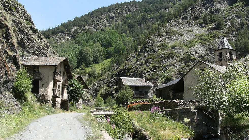Pyrenees tour only