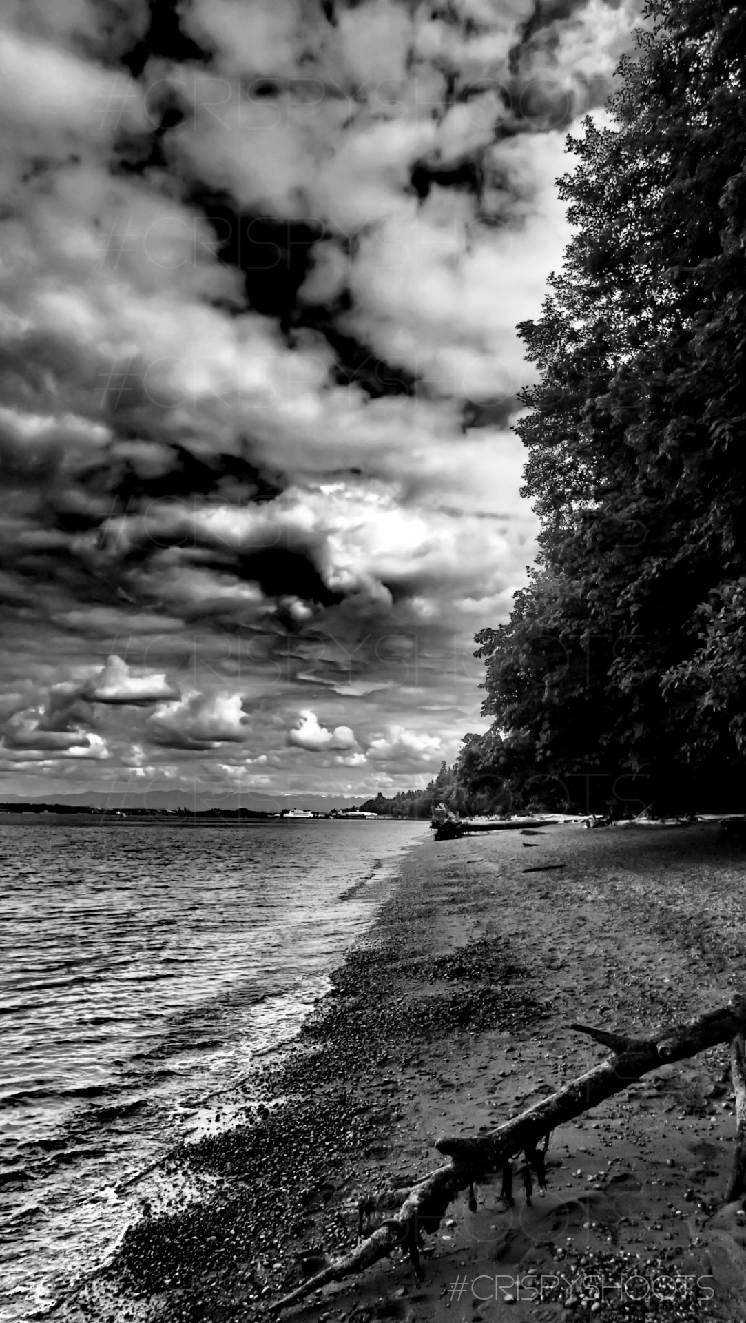 Owen Beach2