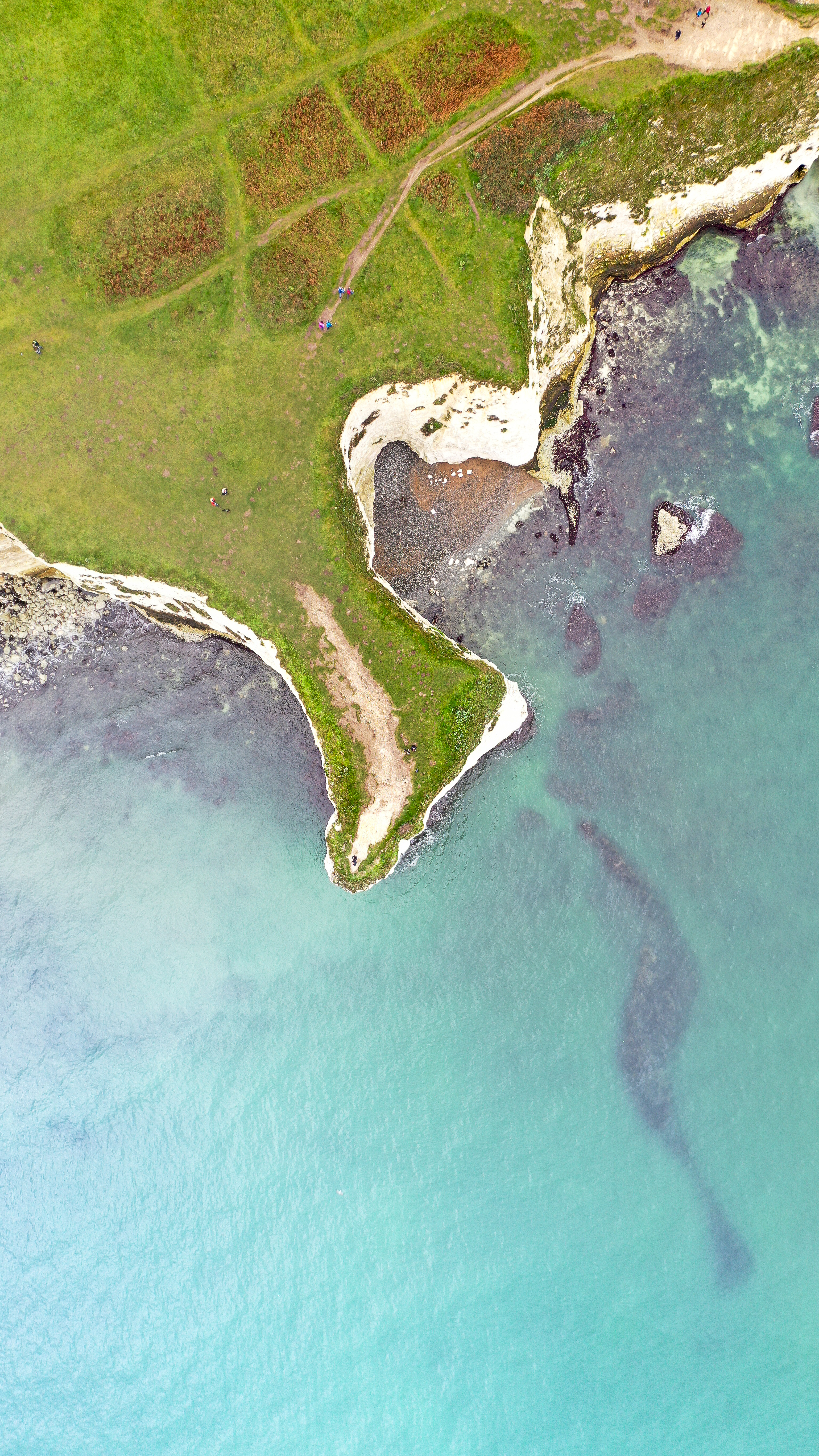 Dorset Jigsaw
