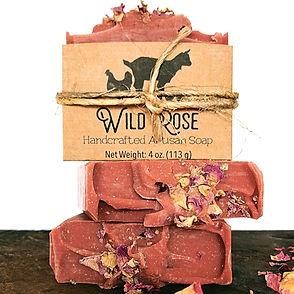 Wild Rose 1_Fotor.jpg