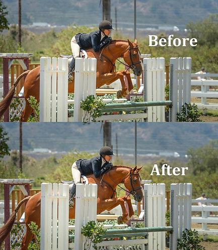 Horse Ear Correction