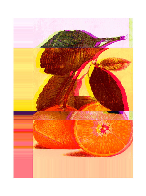Altered Satsuma