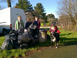 Community litter pick collects 22 sacks of rubbish