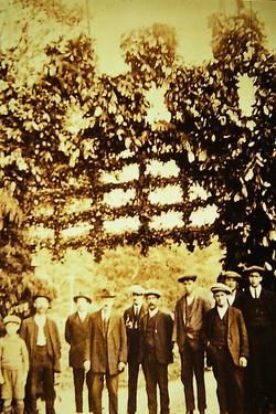 Castle Green - Triumphal Arch -1922