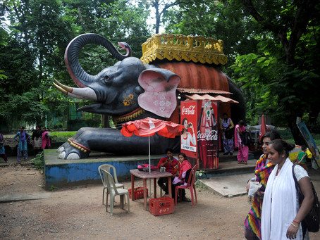 Lions and tigers and steel: Life in Jamshedpur