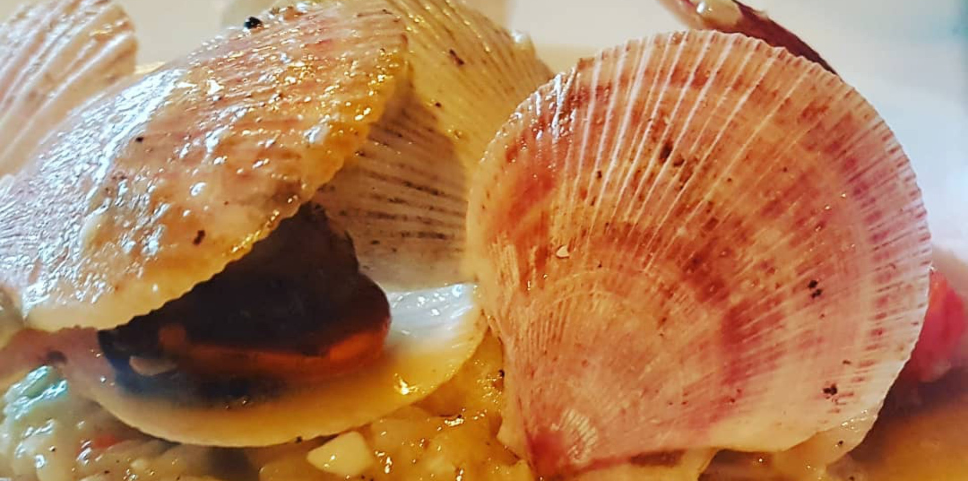 Swimming Scallop Risotto