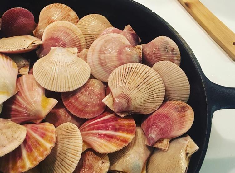 Scallops in a pan