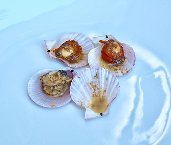 Steamed scallops placed on half the shell and drizzled with Garlic and chilli butter