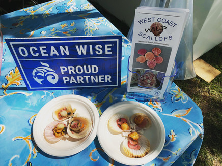 Ocean Wise sign, WC Wild Scallop brochure and the two scallop dishes served at the BC Seafood Festival