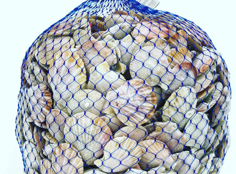 Frozen 20 lb bag of scallops