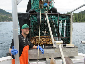 Joel Collier with a trawl full of scallops