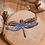 Thumbnail: Collier libellule en vol