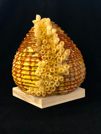 Sweet Honey from the Hive I