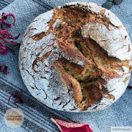 K. u. K.-Brot | glutenfreies Sauerteigbrot mit Karotten u. Körnern