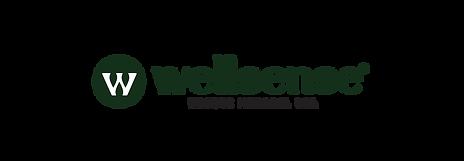 wellsense logo 2-12.png