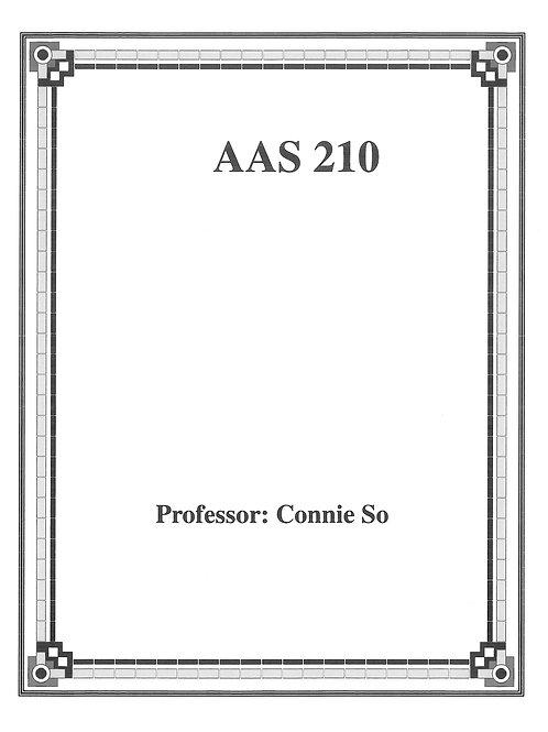 AAS 210