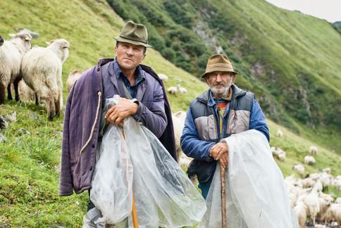 Shepherds in Făgăraș, Romania