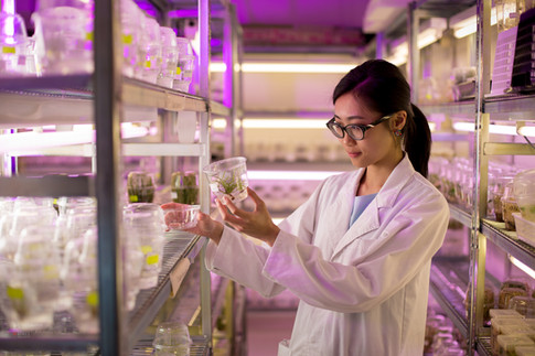 Biotechnology at RMIT