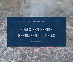 ZOALS EEN FENIKS HERRIJZEN UIT DE AS