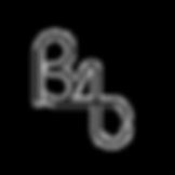 B4C Brand-lg_edited.png