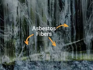 Asbestos - What are my options?