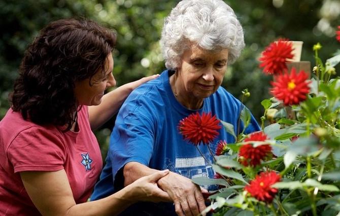 Hacer jardinería te hace feliz y quita la depresión