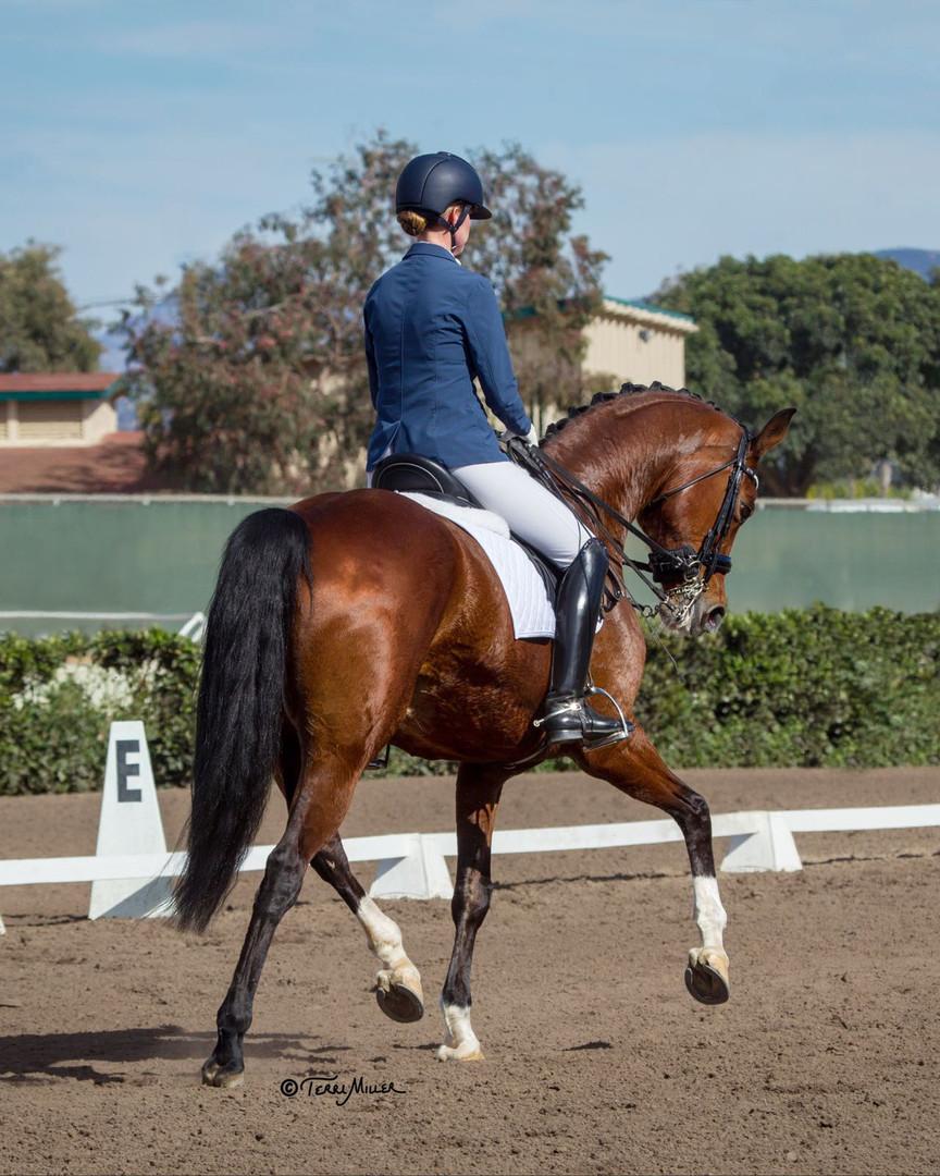 Kim McGrath Dressage trainer and rider