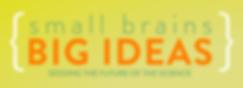 Logo Smallbrains