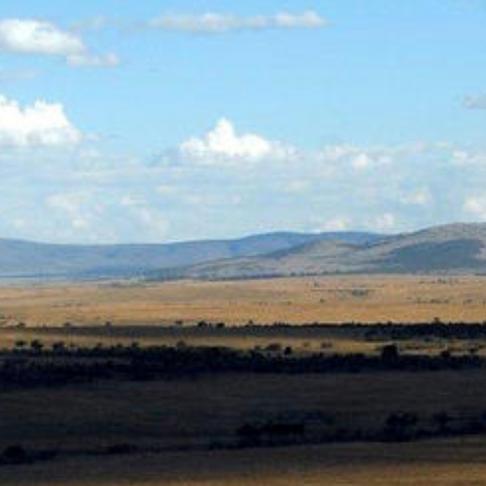 Travel Wild's Best of Kenya
