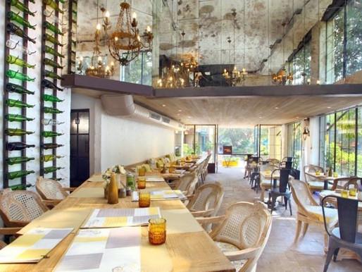 Equinox Travel India - Lunch at Latitude Café