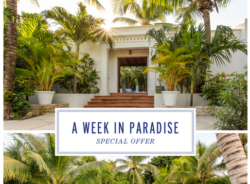 A week in paradise with Hotel Esencia