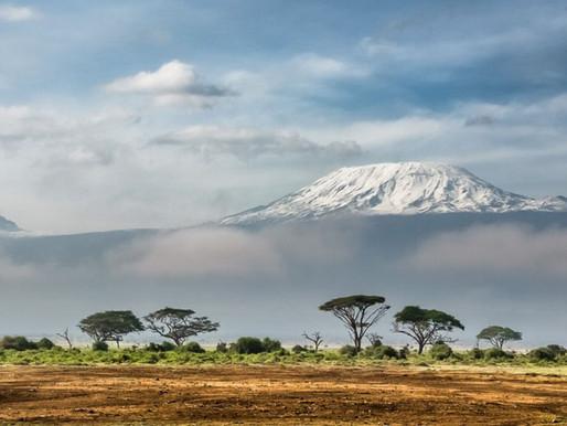Where The Elephants Roam by Travel Wild East Africa