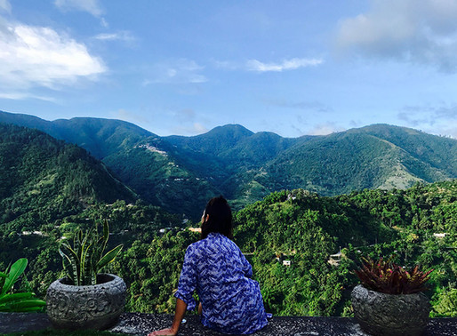 Blue Mountain Bliss at Strawberry Hill