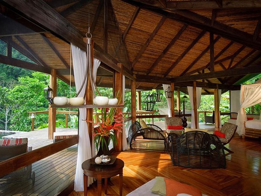Amazing offer from Pacuare Lodge