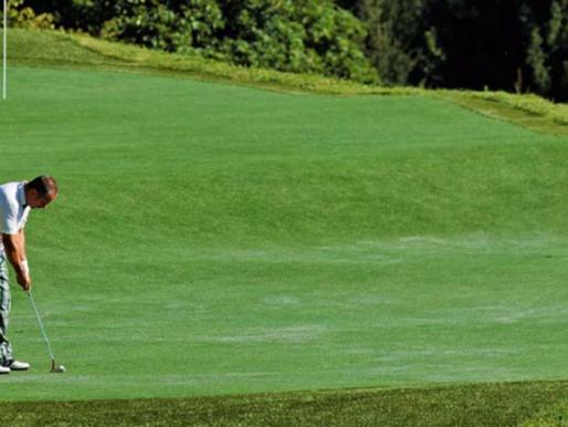 Golf @ White Deer Lodge, San Lorenzo